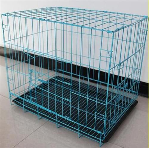 饲养宠物猫应该选择什么样的笼子?